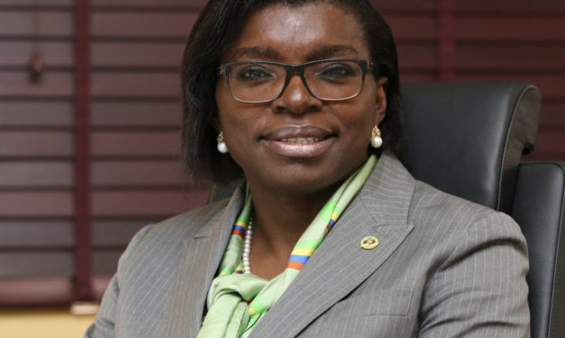 Mrs Arinola Kola-Daisi sheds light on Retail banking in Skye Bank